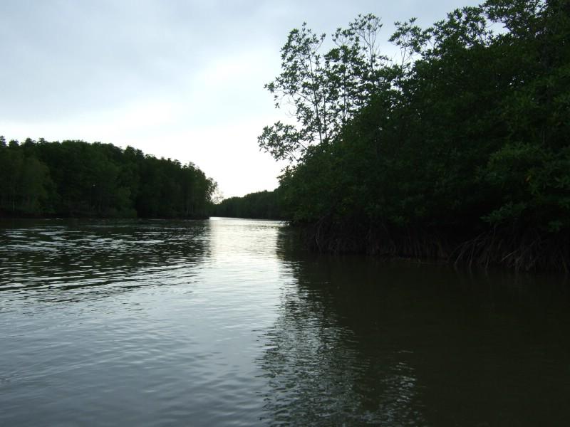 Welu Wetlands, Chanthaburi, Thailand