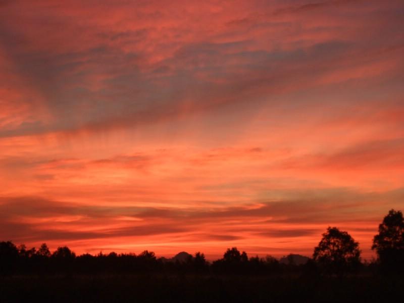 Before sunrise at the Welu wetlands, Chanthaburi, Thailand