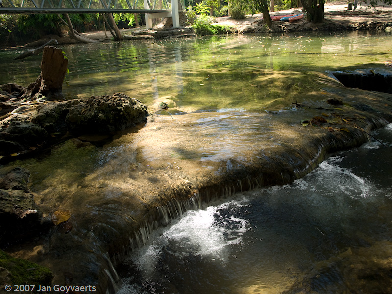 Forest river, reflections filtered with a polarizer